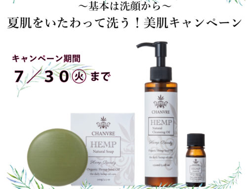 【BEAUTY SUMMER SALE】
